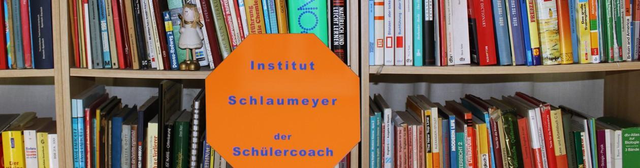 Institut Schlaumeyer